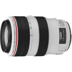Объектив Canon EF 70-300mm F4-5.6L IS USM
