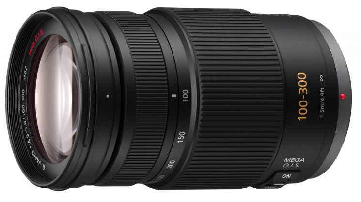 Panasonic 100-300mm f/4-5.6 Aspherical O.I.S. (H-FS100300E)